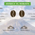 Diferencias entre café Arabica vs. Robusta
